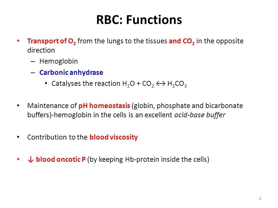 POLYCYTHEMIA ↑ RBC count, Htc and Hb concentration Reasons – Hypoxic erythropoietic drive (i.e., high altitudes, chronic pulmonary or cardiac disease) – Hemoconcentration - dehydration (i.e., heavy sweating, vomiting or diarrhea) – Polycythemia vera or erythremia – uncontrolled RBC production (i.e., neoplastic disease condition of hemocytoblastic cells) Results in – ↑ blood viscosity – ↑ peripheral resistance → ↓ venous return to the heart – ↑ blood volume tends to ↑ venous return – ↑ arterial BP – Ruddy skin and mucosa membranes with cyanotic tint (sluggish blood flow → ↑ blood deoxygenation in the skin circulation) 55