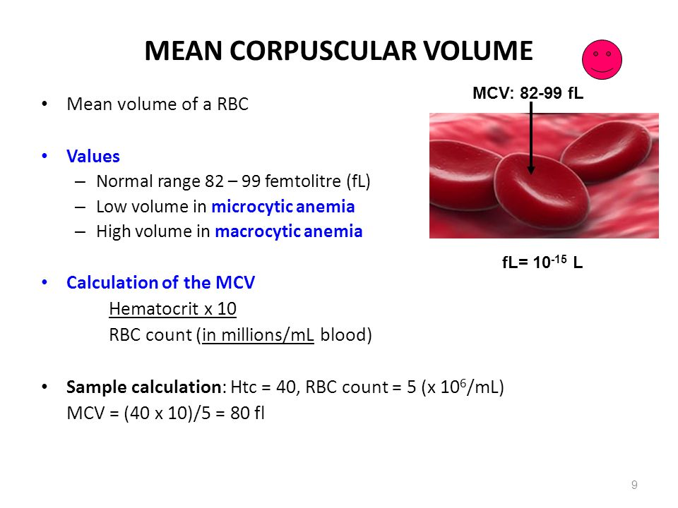 ANEMIA: Nutritional (cont.) Deficiency of vitamin B12 and/or folic acid Reasons – Inadequate intake (a strict vegetarian diet excluding all meat, fish, dairy products, and eggs; chronic alcoholism) – Inadequate GI absorption Lack of IF - pernicious anemia – Autoimmune destruction of parietal cells (atrophic gastric mucosa) or AB against IF – Removal of the functional portion of the stomach, such as during gastric bypass surgery Crohn s disease intestinal malabsorption disorders Resection (or inflammation) of the ileum (site of B12 reabsorption) Consequences – Maturation failure Failure of DNA synthesis with preserved RNA synthesis, which result in restricted cell division of the progenitor cells.