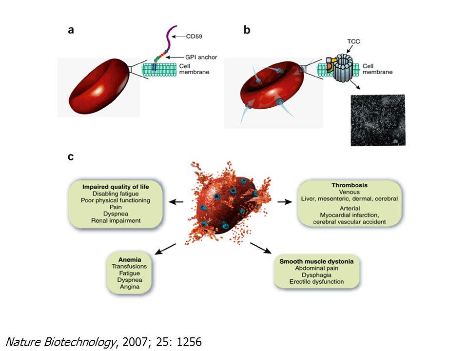 Nature Biotechnology, 2007; 25: 1256