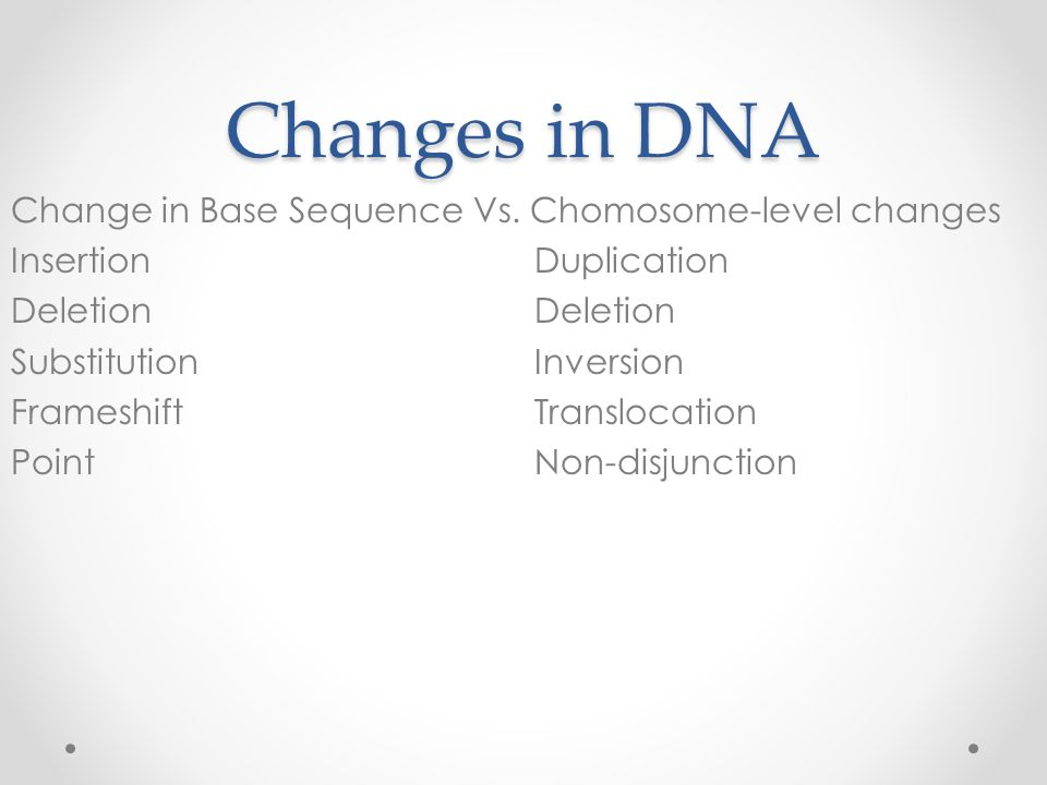 Changes in DNA Change in Base Sequence Vs.