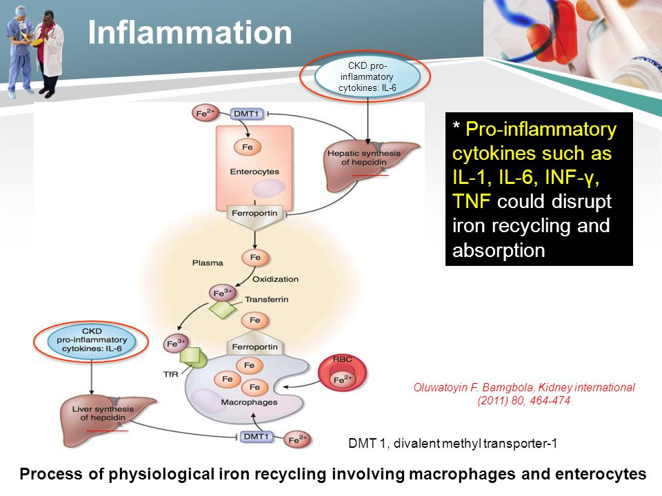Inflammation * Pro-inflammatory cytokines such as IL-1, IL-6, INF-γ, TNF could disrupt iron recycling and absorption DMT 1, divalent methyl transporter-1 CKD pro- inflammatory cytokines: IL-6 Process of physiological iron recycling involving macrophages and enterocytes Oluwatoyin F.