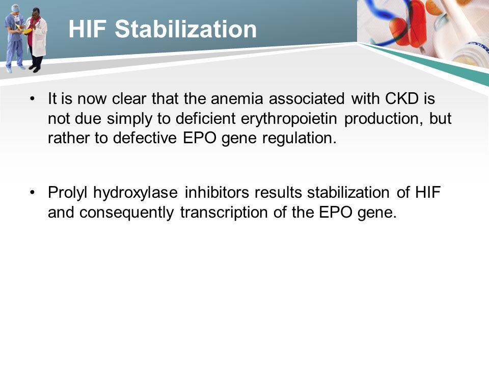 HIF Stabilization It is now clear that the anemia associated with CKD is not due simply to deficient erythropoietin production, but rather to defectiv