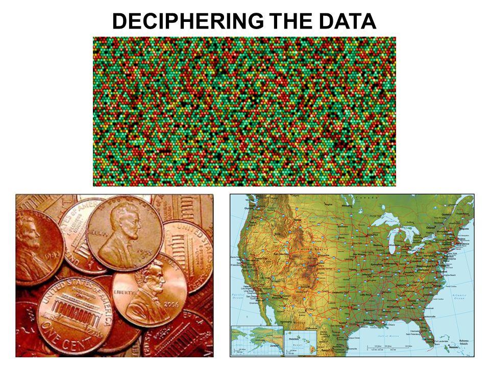 DECIPHERING THE DATA