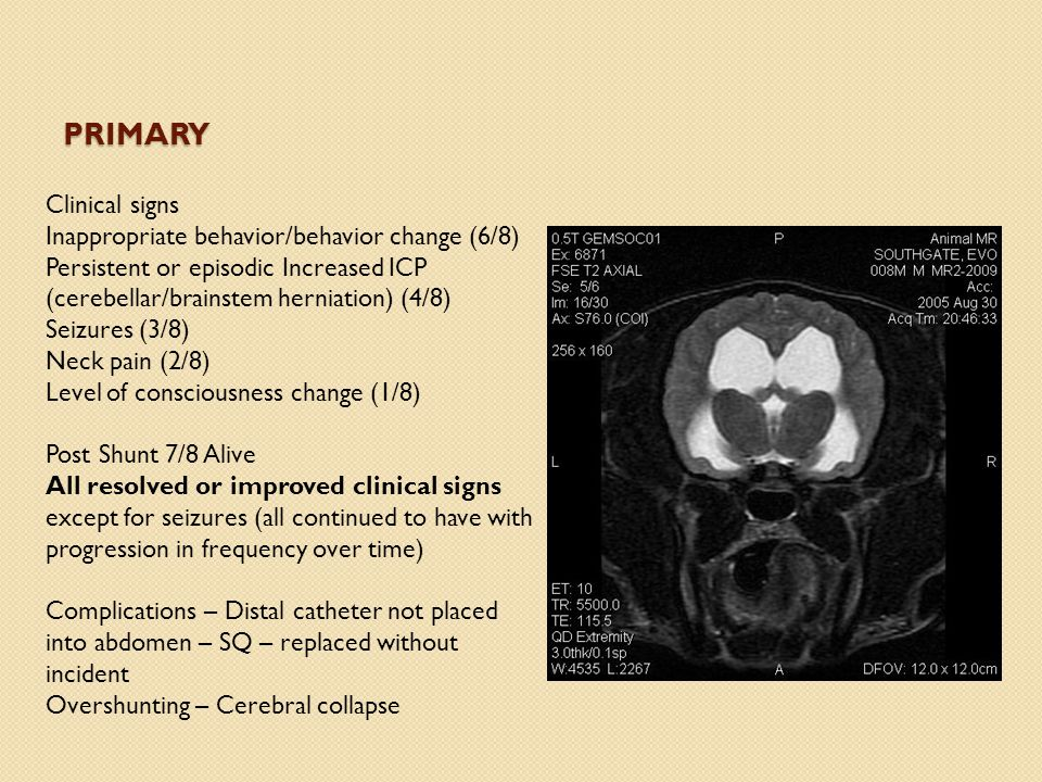 PRIMARY Clinical signs Inappropriate behavior/behavior change (6/8) Persistent or episodic Increased ICP (cerebellar/brainstem herniation) (4/8) Seizu