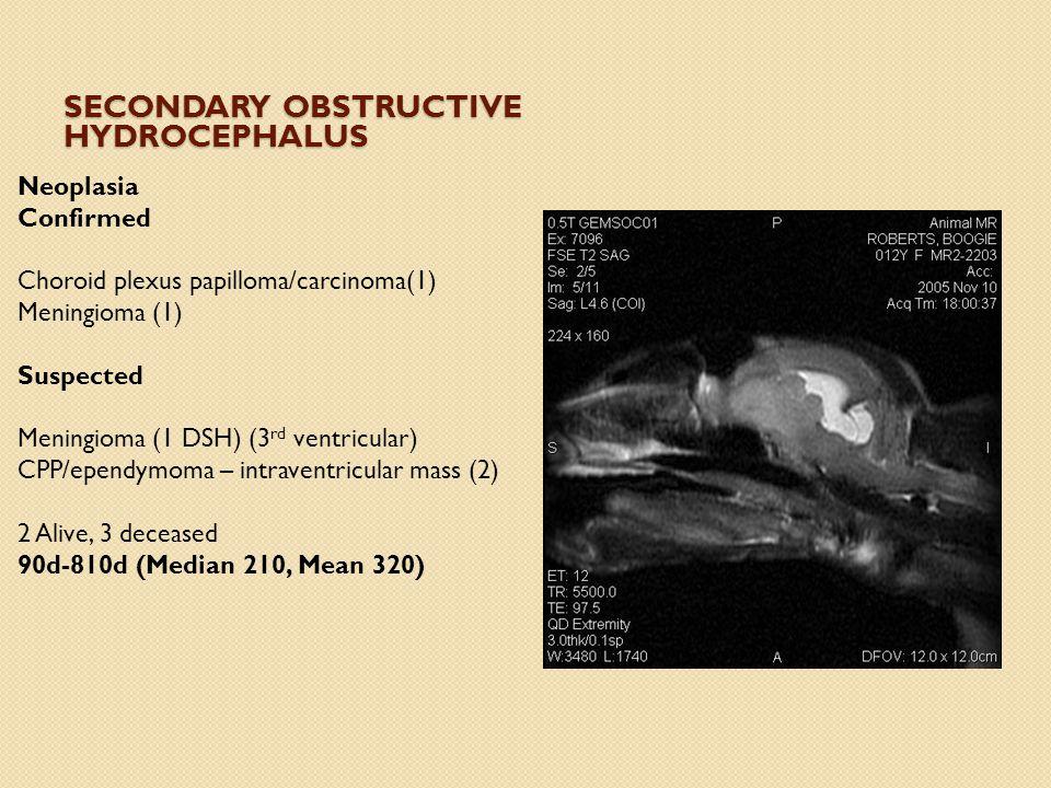 SECONDARY OBSTRUCTIVE HYDROCEPHALUS Neoplasia Confirmed Choroid plexus papilloma/carcinoma(1) Meningioma (1) Suspected Meningioma (1 DSH) (3 rd ventricular) CPP/ependymoma – intraventricular mass (2) 2 Alive, 3 deceased 90d-810d (Median 210, Mean 320)