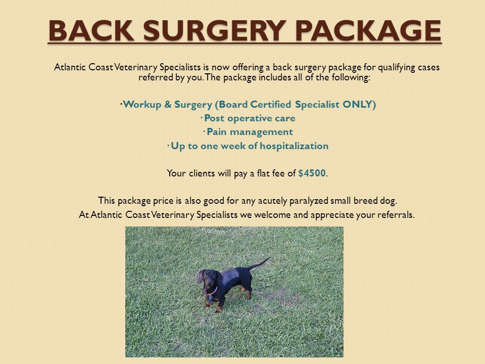 BACK SURGERY PACKAGE BACK SURGERY PACKAGE Atlantic Coast Veterinary Specialists is now offering a back surgery package for qualifying cases referred b
