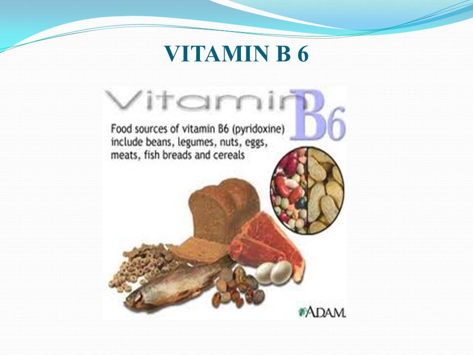 VITAMIN B 6