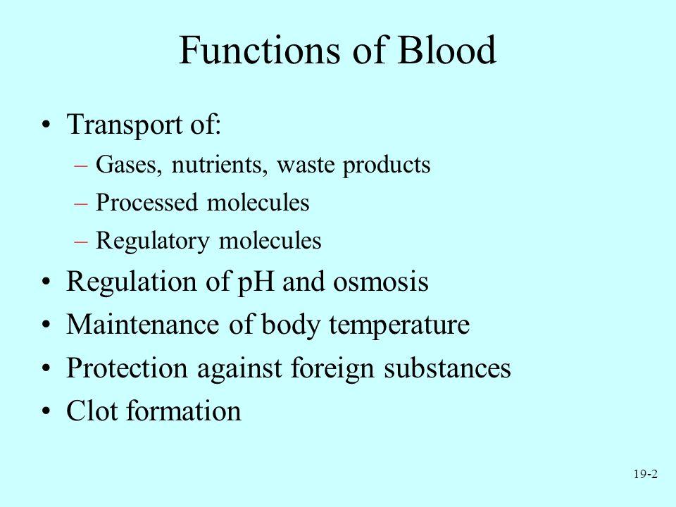 19-13 Leukocytes