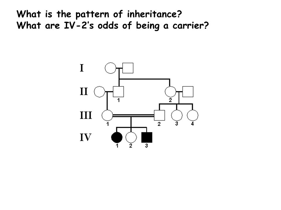 What is the pattern of inheritance What are IV-2's odds of being a carrier