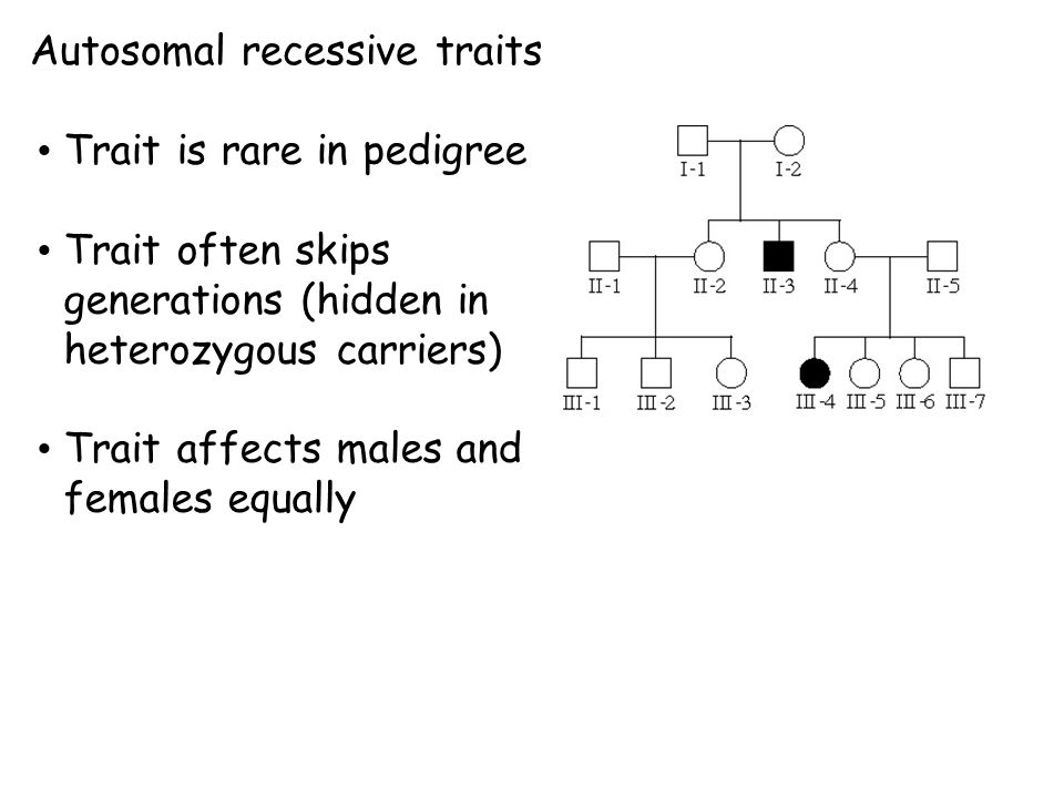 Autosomal recessive traits Trait is rare in pedigree Trait often skips generations (hidden in heterozygous carriers) Trait affects males and females equally