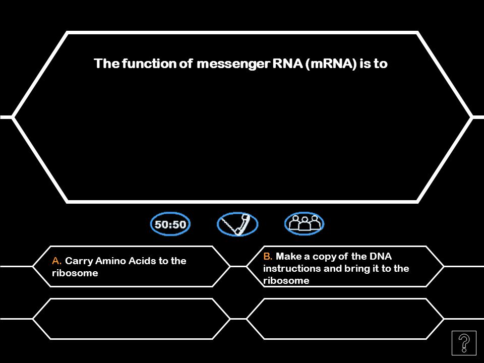 A. Transfer an amino acid to the ribosome The function of ribosomal RNA (rRNA) is to D.