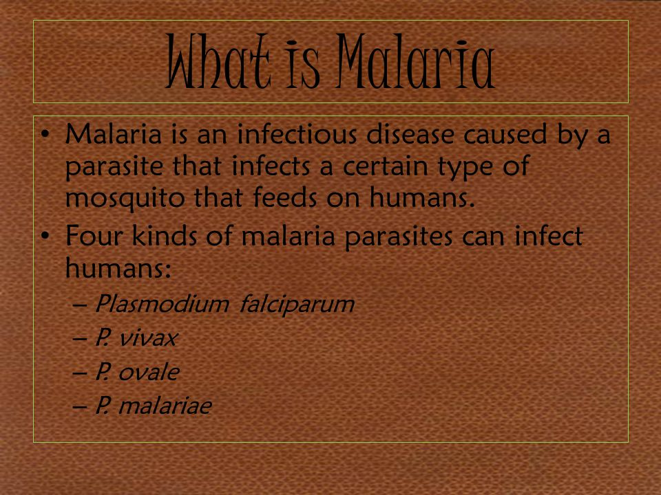 What is Malaria Malaria is an infectious disease caused by a parasite that infects a certain type of mosquito that feeds on humans.
