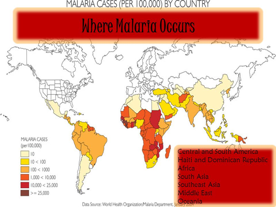 Plasmodium by coreena and kyle what is malaria the disease how 5 where malaria occurs central and south america haiti and dominican republic africa south asia southeast asia middle east oceania publicscrutiny Gallery