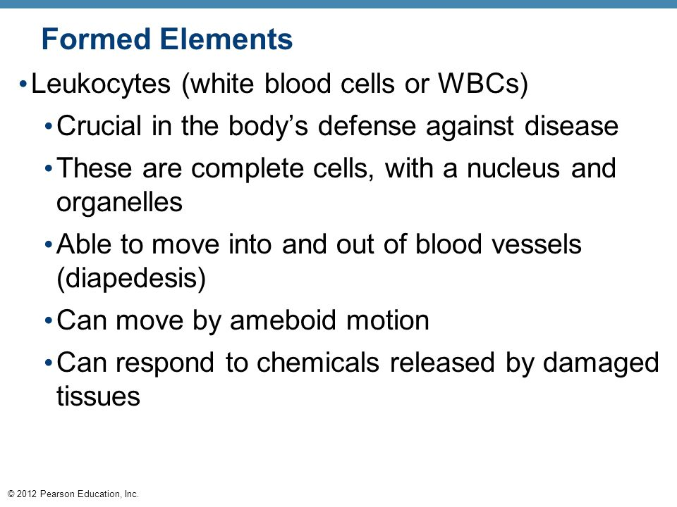 © 2012 Pearson Education, Inc. Formed Elements Leukocytes (white blood cells or WBCs) Crucial in the body's defense against disease These are complete