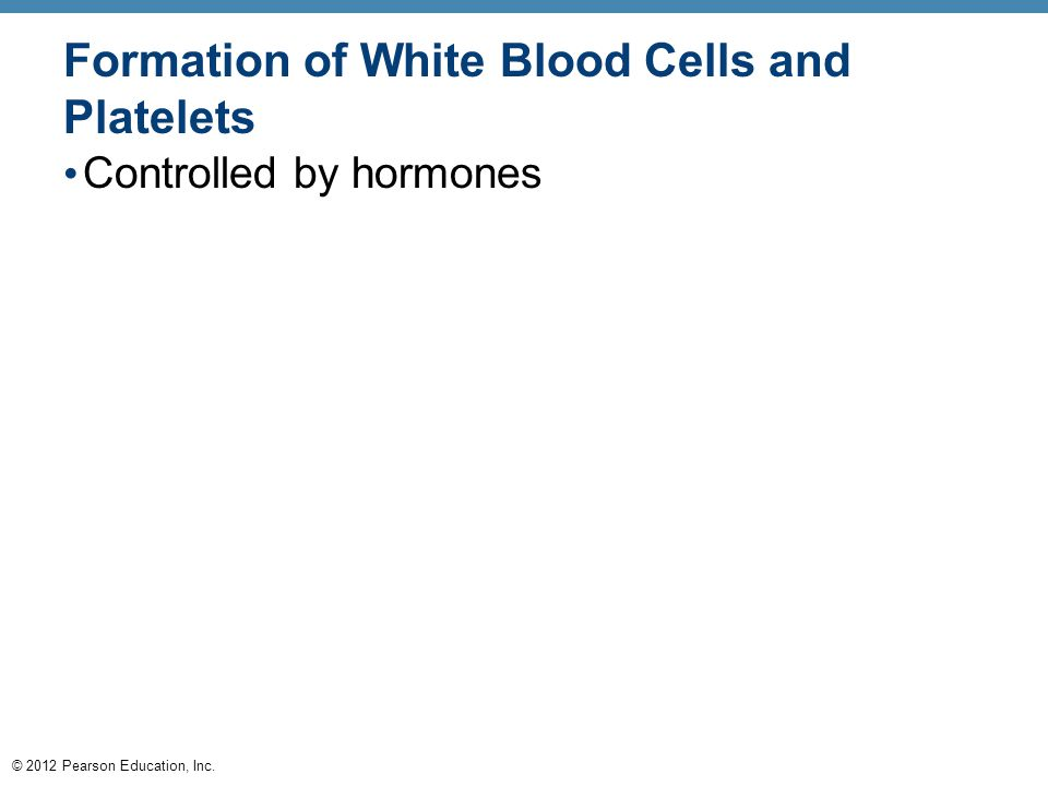 © 2012 Pearson Education, Inc. Formation of White Blood Cells and Platelets Controlled by hormones