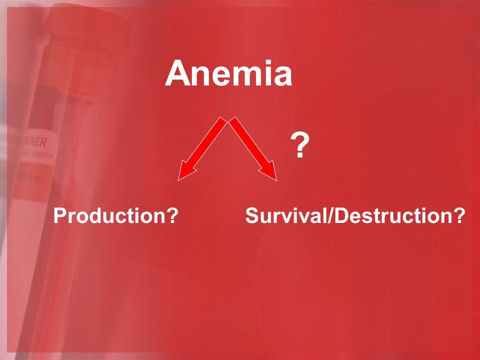 Anemia Production?Survival/Destruction? ?
