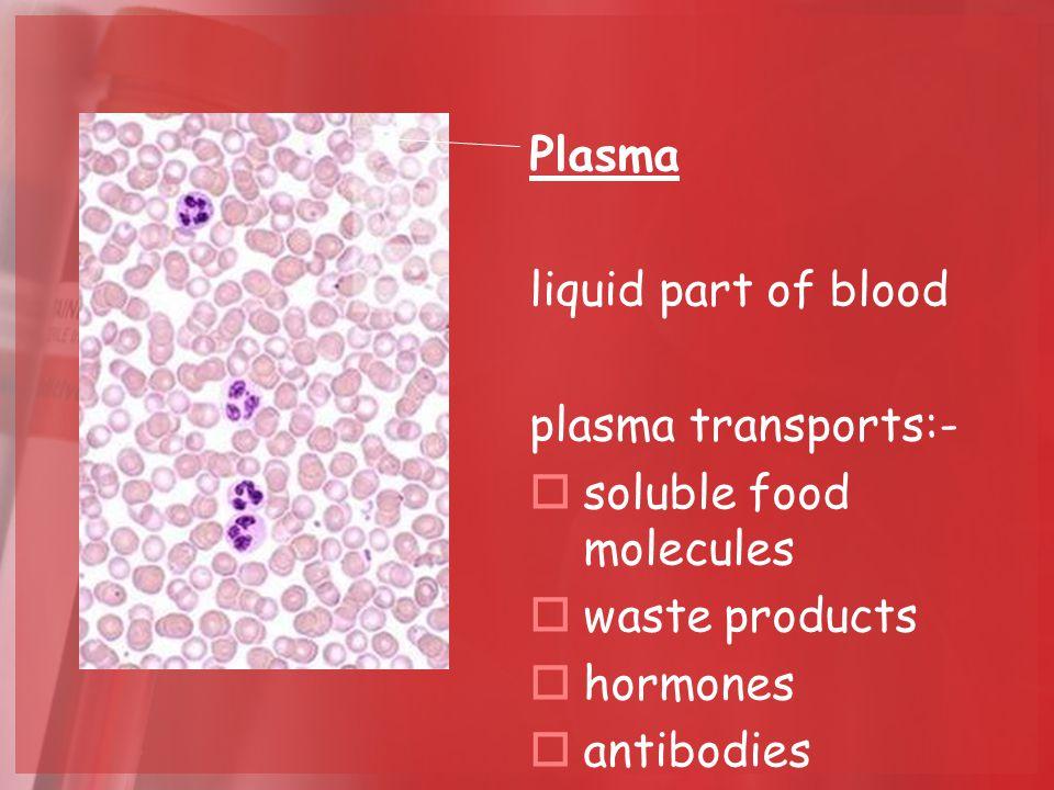 Plasma liquid part of blood plasma transports:-  soluble food molecules  waste products  hormones  antibodies