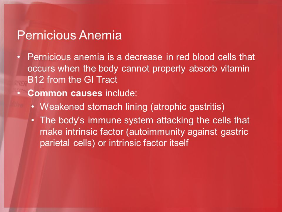 Pernicious Anemia Pernicious anemia is a decrease in red blood cells that occurs when the body cannot properly absorb vitamin B12 from the GI Tract Common causes include: Weakened stomach lining (atrophic gastritis) The body s immune system attacking the cells that make intrinsic factor (autoimmunity against gastric parietal cells) or intrinsic factor itself