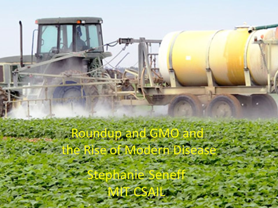 Roundup and GMO and the Rise of Modern Disease Stephanie Seneff MIT CSAIL