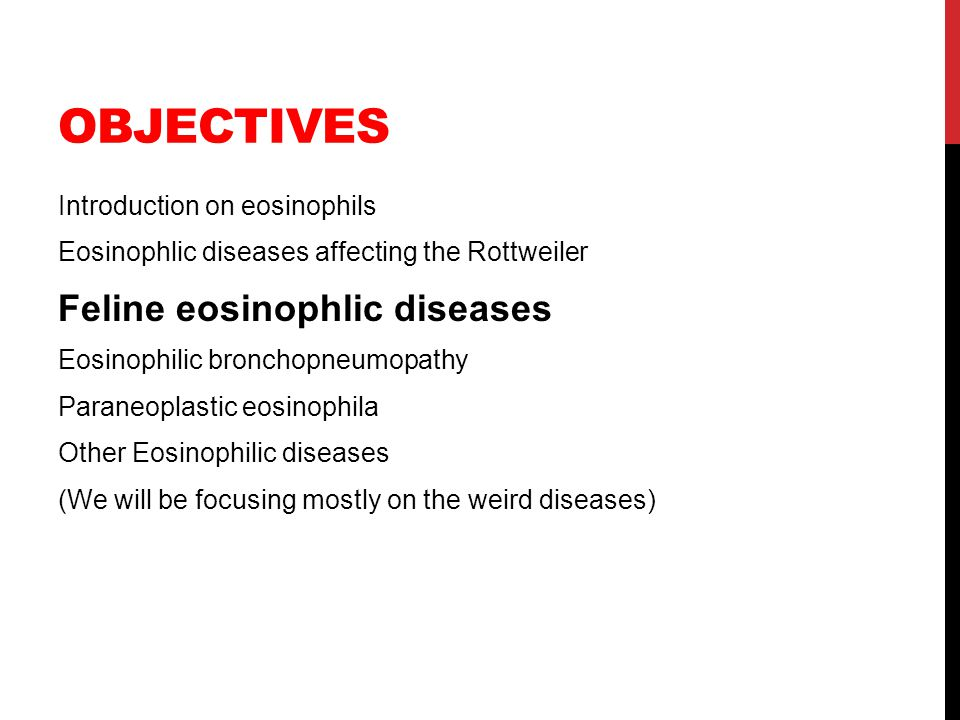OBJECTIVES Introduction on eosinophils Eosinophlic diseases affecting the Rottweiler Feline eosinophlic diseases Eosinophilic bronchopneumopathy Paran