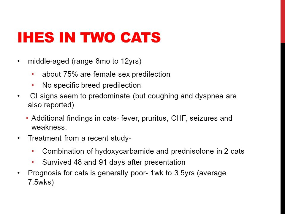 IHES IN TWO CATS middle-aged (range 8mo to 12yrs) about 75% are female sex predilection No specific breed predilection GI signs seem to predominate (b