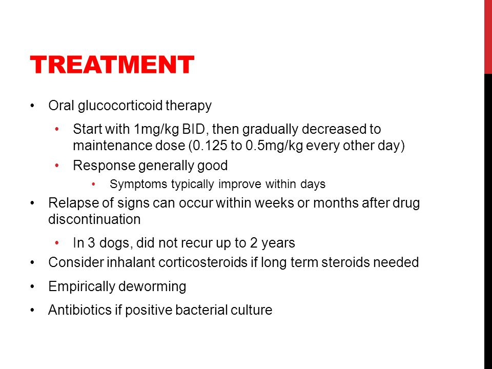 TREATMENT Oral glucocorticoid therapy Start with 1mg/kg BID, then gradually decreased to maintenance dose (0.125 to 0.5mg/kg every other day) Response