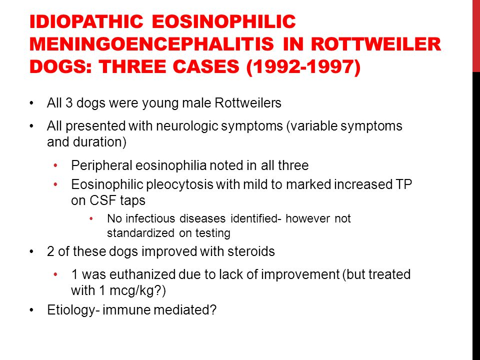 IDIOPATHIC EOSINOPHILIC MENINGOENCEPHALITIS IN ROTTWEILER DOGS: THREE CASES (1992-1997) All 3 dogs were young male Rottweilers All presented with neur