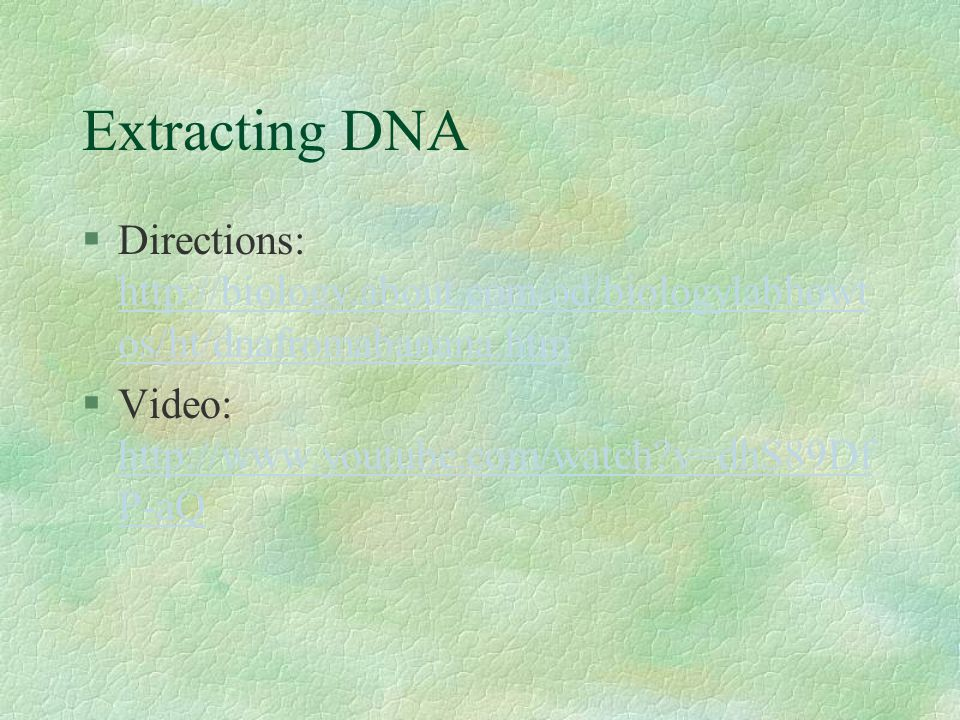 Extracting DNA §Directions: http://biology.about.com/od/biologylabhowt os/ht/dnafromabanana.htm http://biology.about.com/od/biologylabhowt os/ht/dnafromabanana.htm §Video: http://www.youtube.com/watch v=dhS89Df P-aQ http://www.youtube.com/watch v=dhS89Df P-aQ