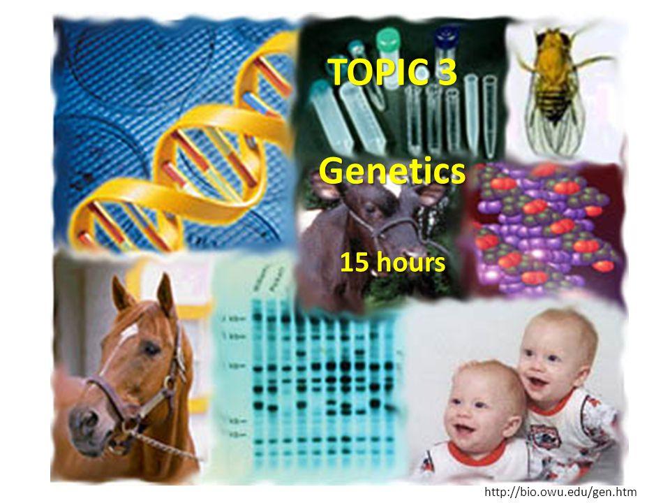 TOPIC 3 Genetics 15 hours http://bio.owu.edu/gen.htm