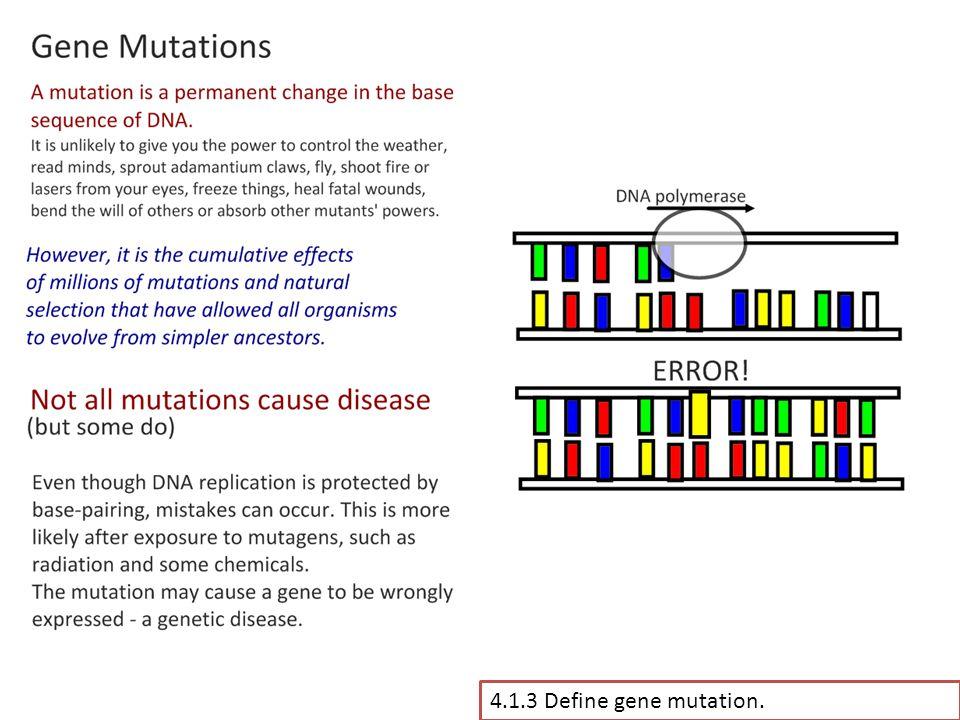 4.1.3 Define gene mutation.