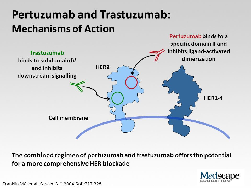 HER2 HER1-4 Pertuzumab binds to a specific domain II and inhibits ligand-activated dimerization Trastuzumab binds to subdomain IV and inhibits downstr