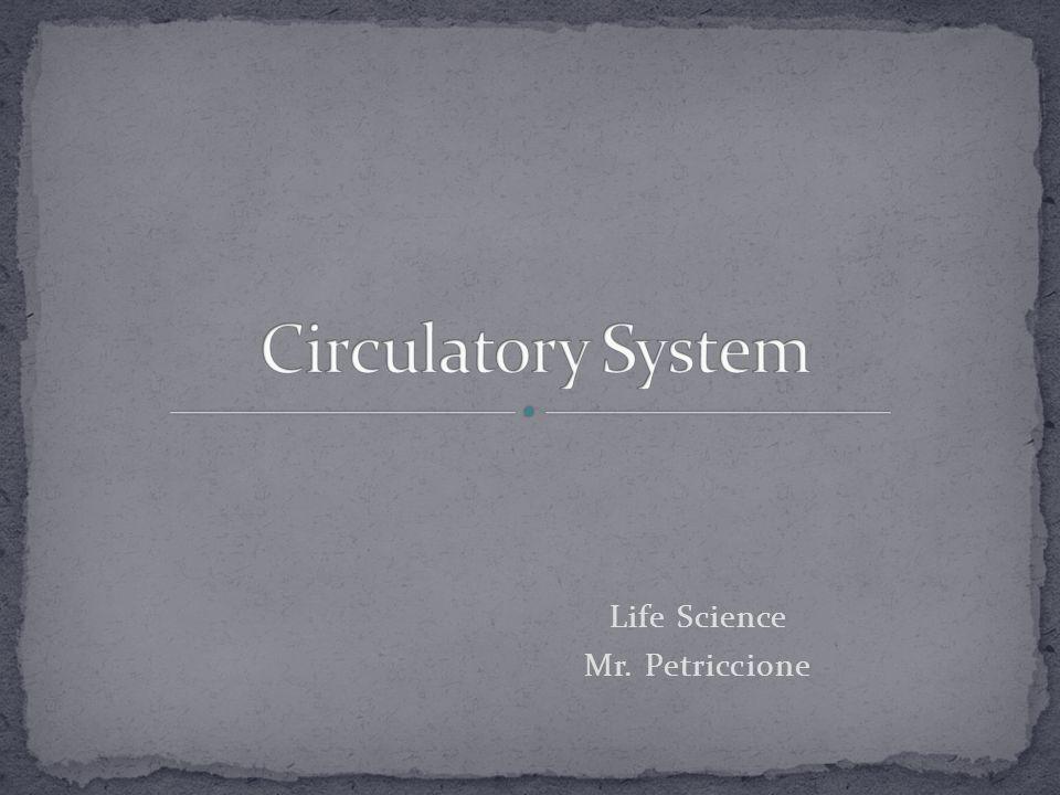 Life Science Mr. Petriccione