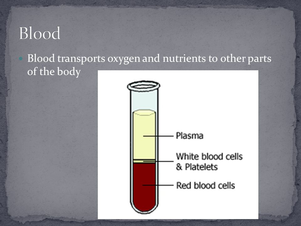 Blood transports oxygen and nutrients to other parts of the body