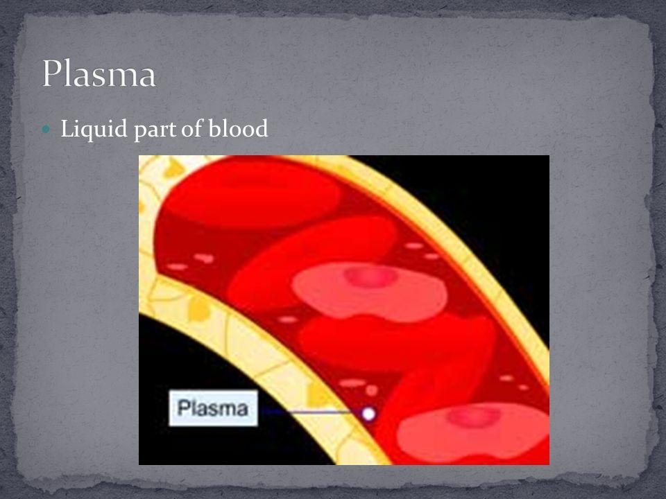 Liquid part of blood