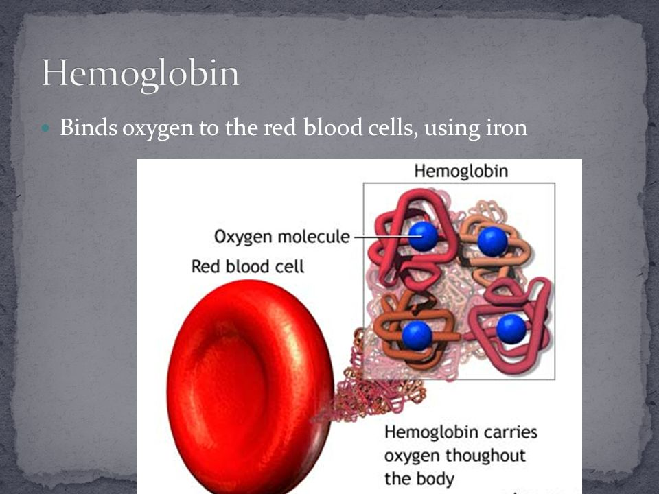 Binds oxygen to the red blood cells, using iron