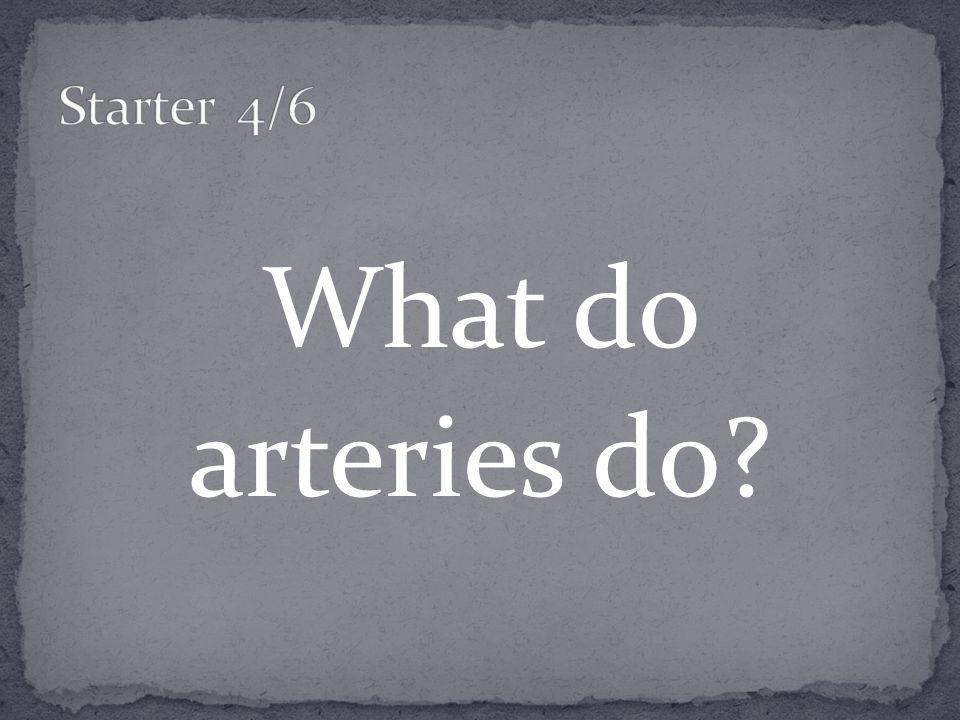 What do arteries do
