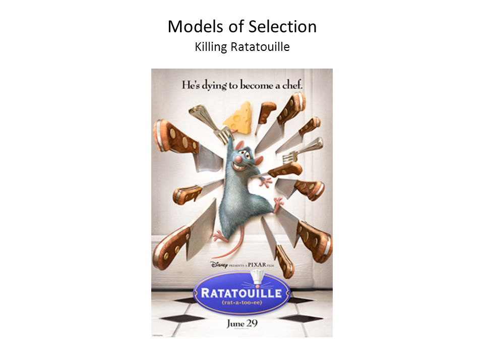 Models of Selection Killing Ratatouille