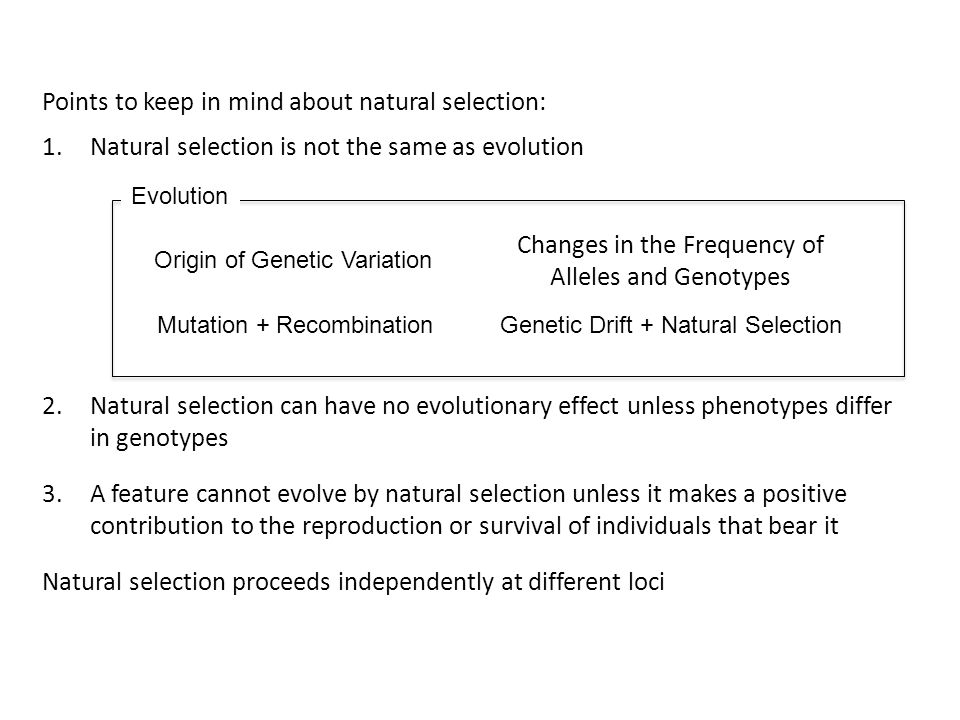 Points to keep in mind about natural selection: 1.Natural selection is not the same as evolution Origin of Genetic Variation Mutation + RecombinationG