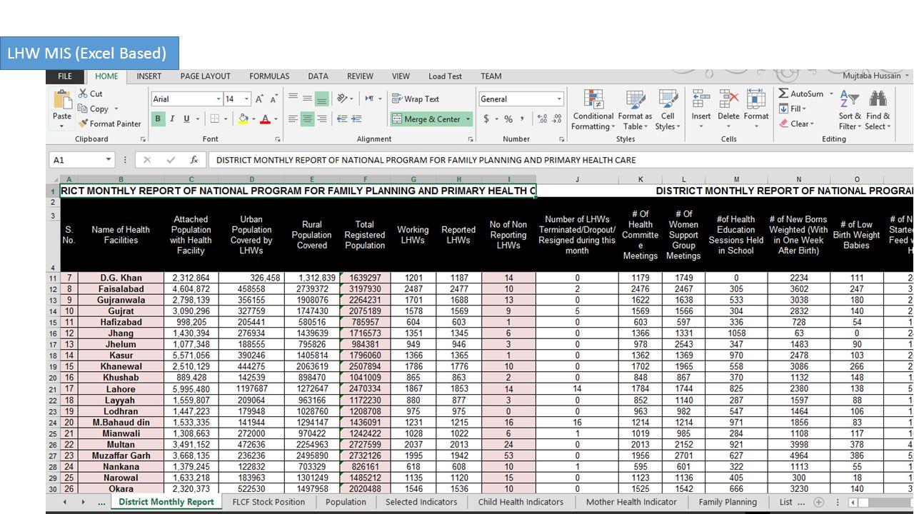 LHW MIS (Excel Based)