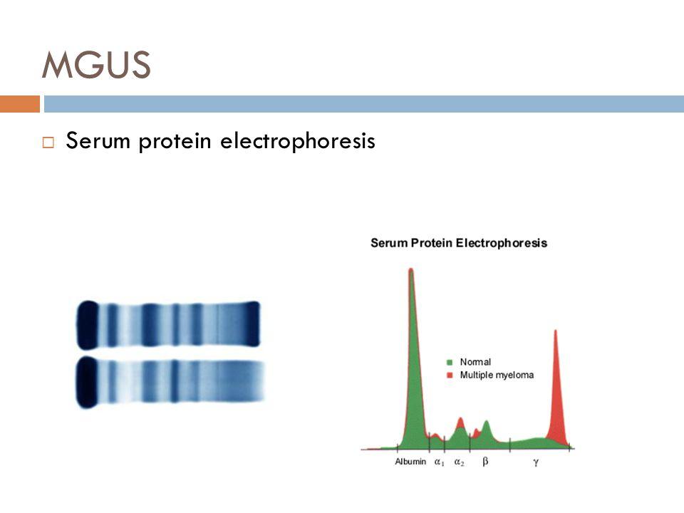MGUS  Serum protein electrophoresis