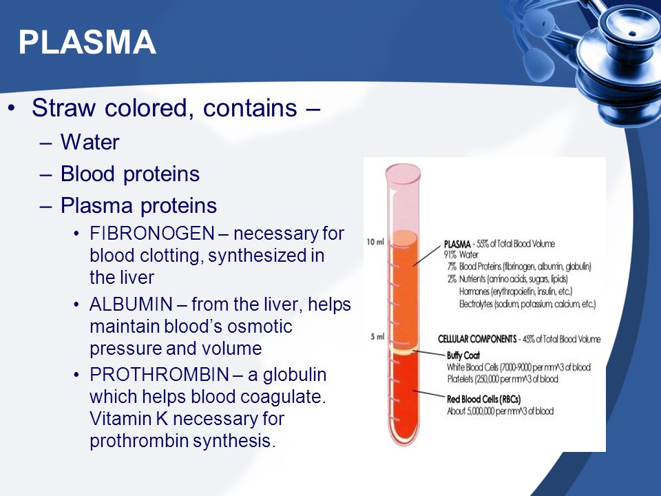 Plasma –Nutrients –Electrolytes –Hormones, vitamins, enzymes –Metabolic waster products