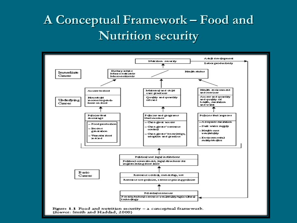 A Conceptual Framework – Food and Nutrition security