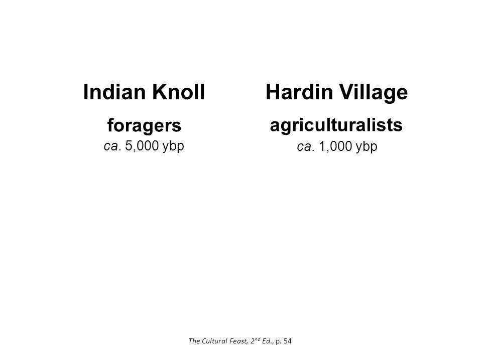 Hardin Village foragers agriculturalists Indian Knoll ca.