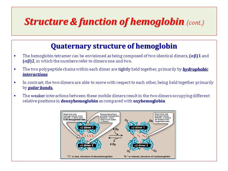 oxygenation & deoxygenation of hemoglobin oxygenation & deoxygenation of hemoglobin (oxyhemoglobin & deoxyhemoglobin) Oxyhemoglobin Relaxed structure Deoxyhemoglobin Taut structure