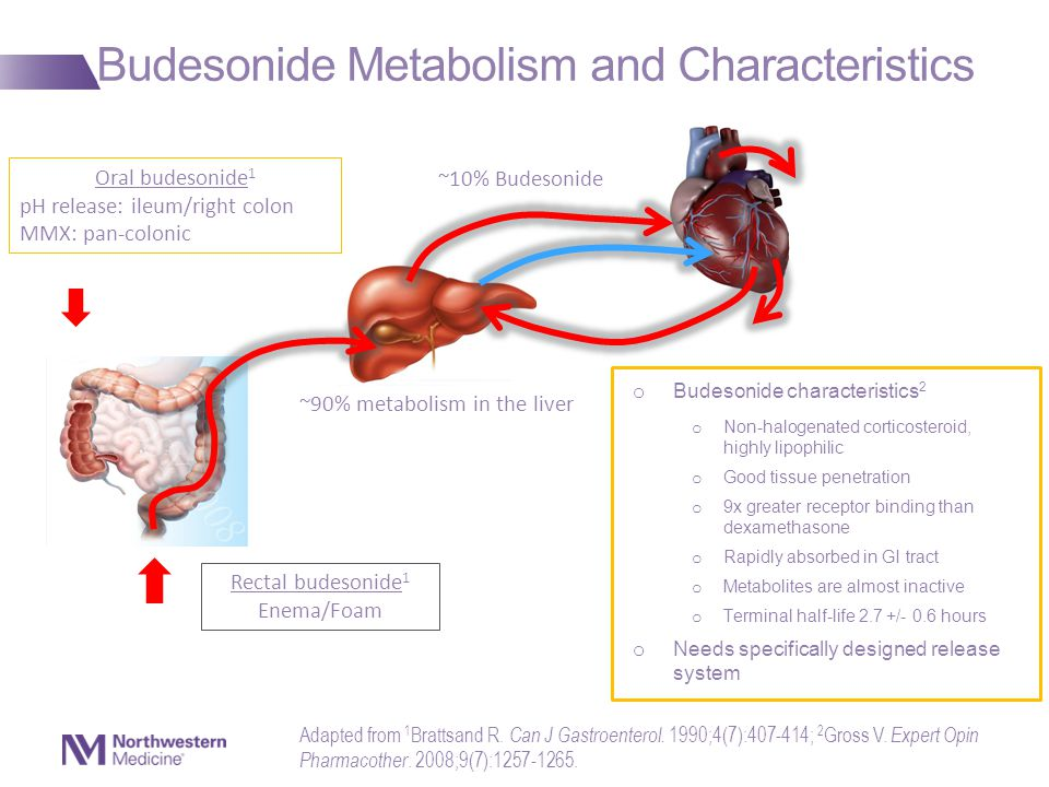 Budesonide Metabolism and Characteristics ~90% metabolism in the liver ~10% Budesonide Rectal budesonide 1 Enema/Foam Oral budesonide 1 pH release: ileum/right colon MMX: pan-colonic o Budesonide characteristics 2 o Non-halogenated corticosteroid, highly lipophilic o Good tissue penetration o 9x greater receptor binding than dexamethasone o Rapidly absorbed in GI tract o Metabolites are almost inactive o Terminal half-life 2.7 +/- 0.6 hours o Needs specifically designed release system Adapted from 1 Brattsand R.