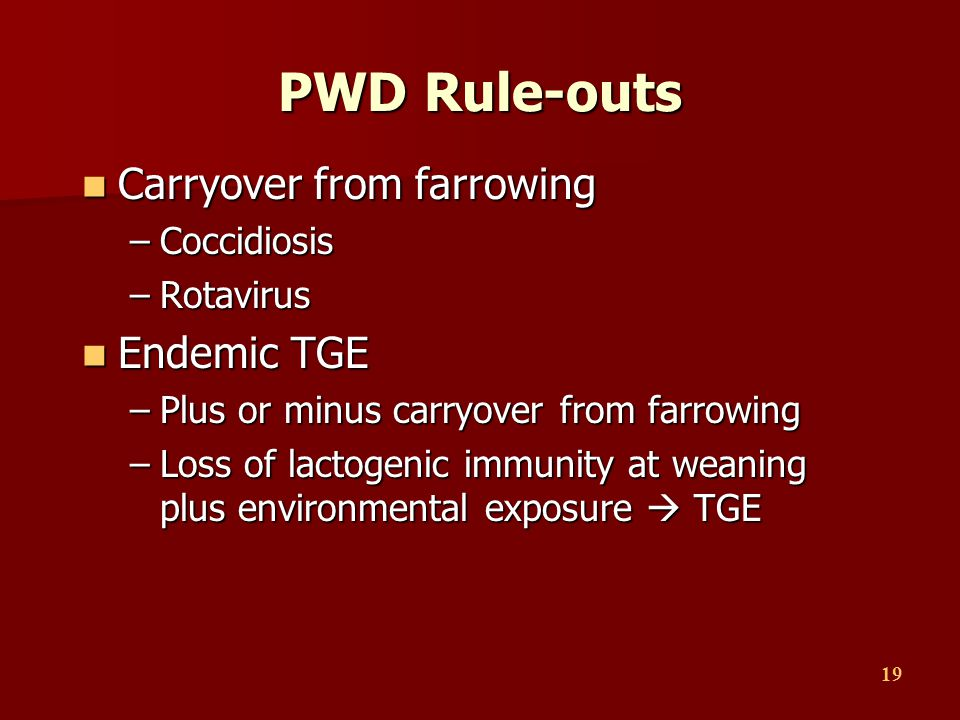 19 PWD Rule-outs Carryover from farrowing Carryover from farrowing –Coccidiosis –Rotavirus Endemic TGE Endemic TGE –Plus or minus carryover from farro