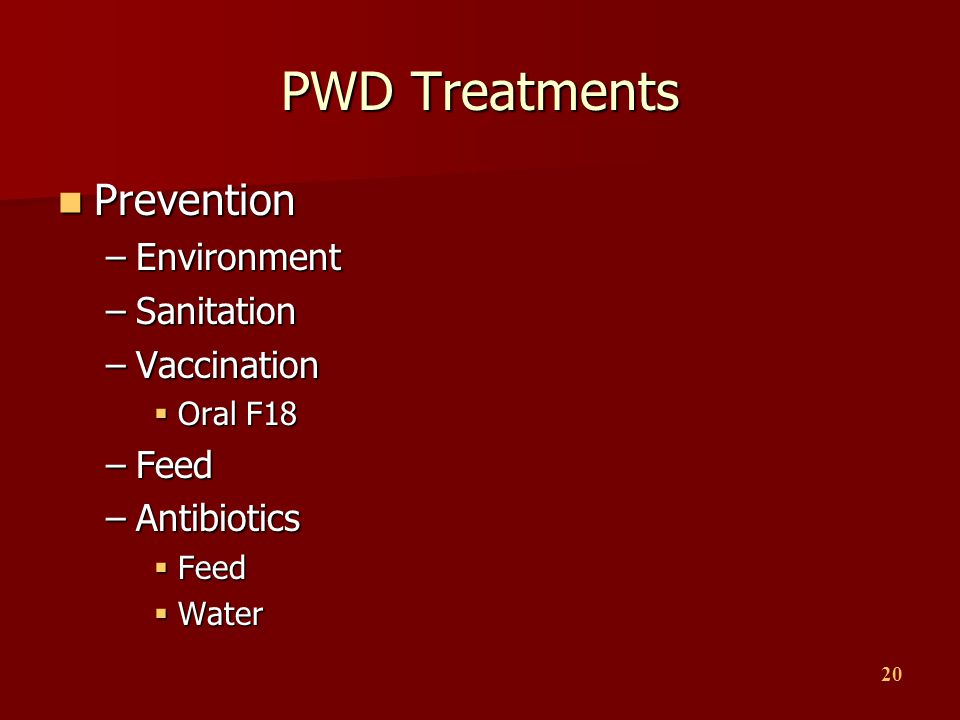 20 PWD Treatments Prevention Prevention –Environment –Sanitation –Vaccination  Oral F18 –Feed –Antibiotics  Feed  Water