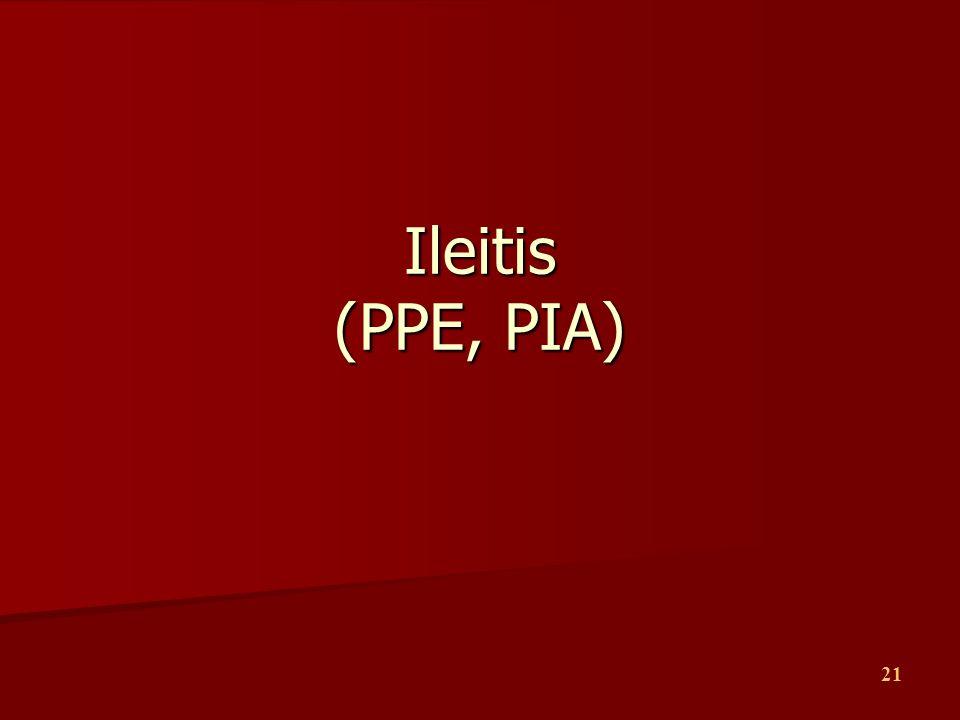 21 Ileitis (PPE, PIA)