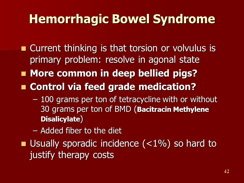 42 Hemorrhagic Bowel Syndrome Current thinking is that torsion or volvulus is primary problem: resolve in agonal state Current thinking is that torsio