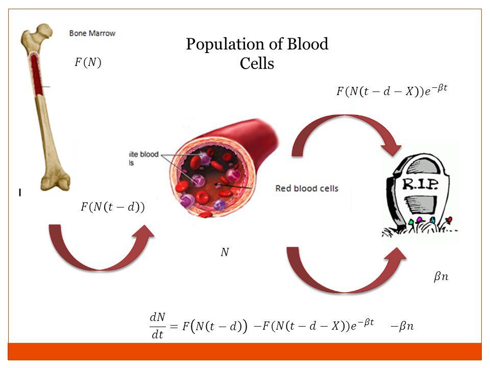 Population of Blood Cells